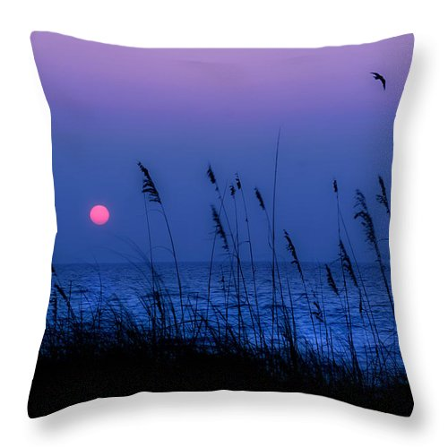 Grass Throw Pillow featuring the photograph Grasses Frame The Setting Sun In Florida by Mal Bray