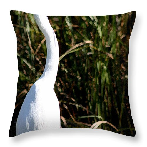 Egret Throw Pillow featuring the photograph Grassy Egret by Mary Haber