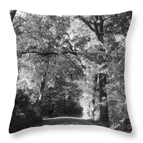Back Throw Pillow featuring the photograph Graves Rd by September Stone