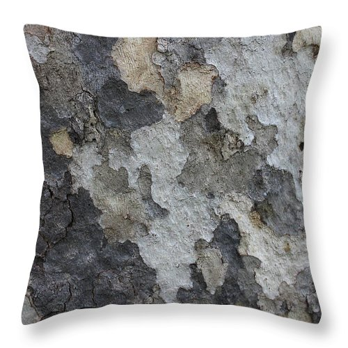 Gray And Tan Bark On Sycamore Tree Throw Pillow For Sale By Carol Groenen