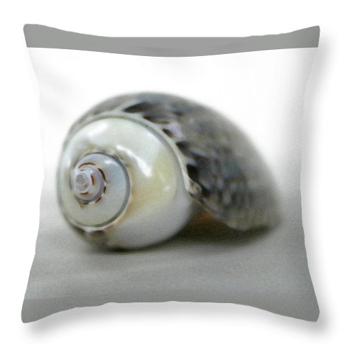 Shells Throw Pillow featuring the photograph Graysnail by Mary Haber