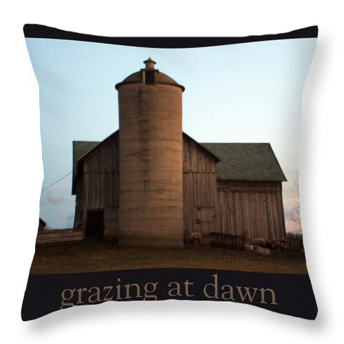 Barn Throw Pillow featuring the photograph Grazing At Dawn by Tim Nyberg