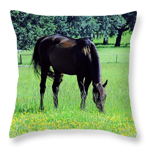 Horse Throw Pillow featuring the photograph Grazing Horse In The Flowers by D Hackett