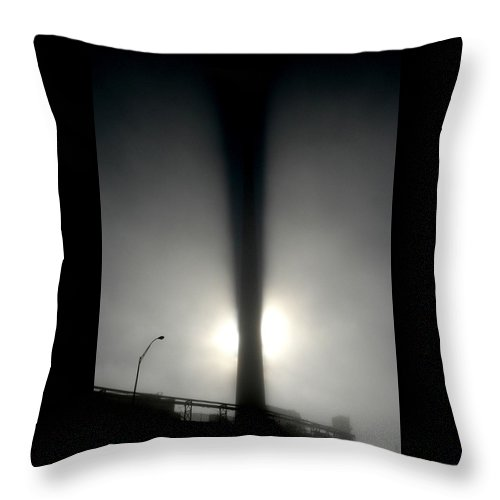 Beast Throw Pillow featuring the photograph Something In The Way by M Pace