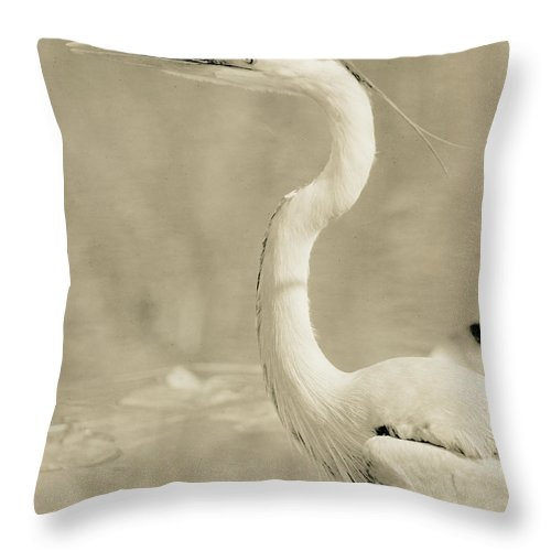Bird Throw Pillow featuring the photograph Great Blue Heron Alternate Processed by John Harmon