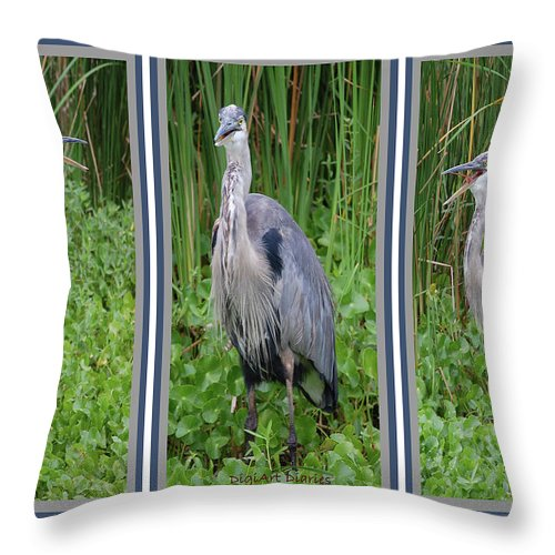 Bird Throw Pillow featuring the digital art Great Blue Heron Collage by DigiArt Diaries by Vicky B Fuller
