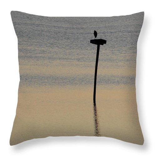 Hampton Throw Pillow featuring the photograph Great Blue Heron I by Brett Winn