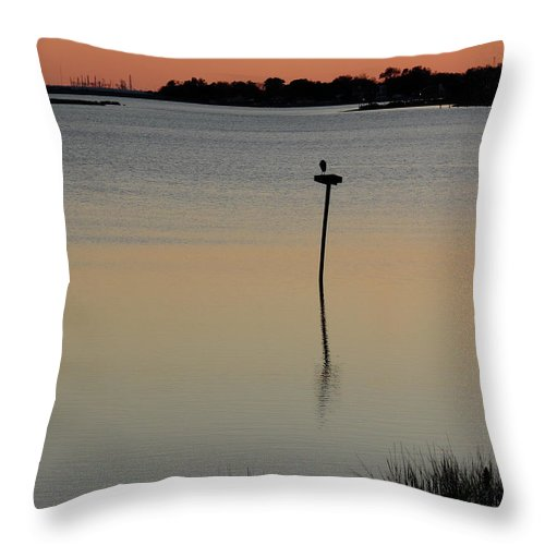 Hampton Throw Pillow featuring the photograph Great Blue Heron II by Brett Winn
