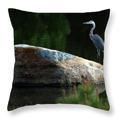 Heron Throw Pillow featuring the photograph Great Blue Heron by Mark Ivins