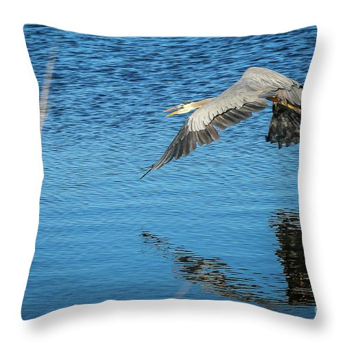 Heron Throw Pillow featuring the photograph Great Blue In Flight #3 by Tom Claud