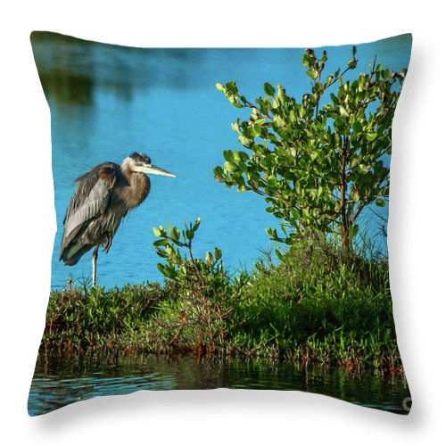 Blue Heron Throw Pillow featuring the photograph Great Blue On One Leg by Tom Claud