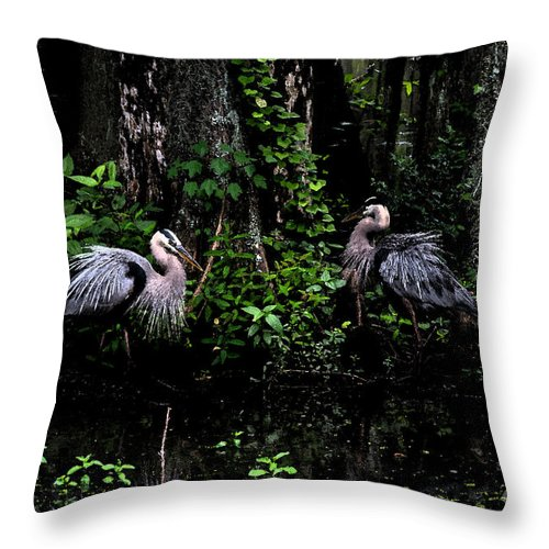 Plumage Throw Pillow featuring the photograph Great Blue Standoff In Watercolor by Alicia Collins