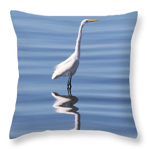 Great Egret Throw Pillow featuring the photograph Great Egret - 2 by Christy Pooschke