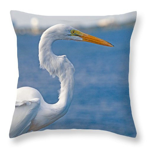 Great; Egret; Ardea; Alba; Bird; Seabird; Ocean; Indian; River; Lagoon; Sea; Melbourne; Beach; Breva Throw Pillow featuring the photograph Great Egret At Melbourne Beach by Allan Hughes