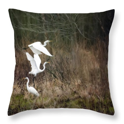 Bird Throw Pillow featuring the photograph Great Egrets by Al Mueller