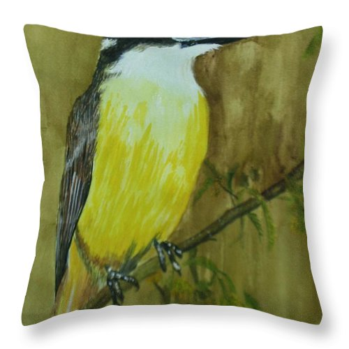 Birds Throw Pillow featuring the painting Great Kiskadee by Betty-Anne McDonald