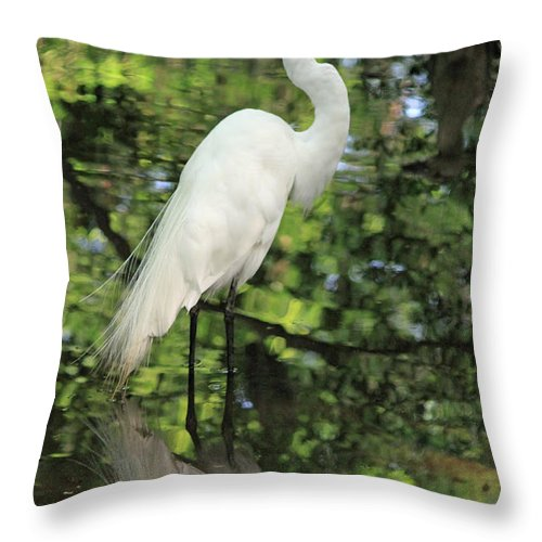 Egret Throw Pillow featuring the photograph Great White Egret In Spring by Suzanne Gaff