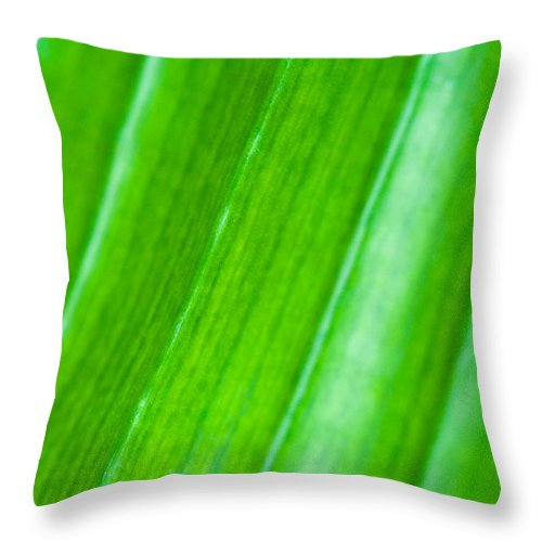 Abstract Throw Pillow featuring the photograph Green Abyss by Sebastian Musial