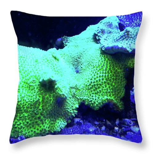 Green Throw Pillow featuring the photograph Green and Purple Coral by Kirsten Giving