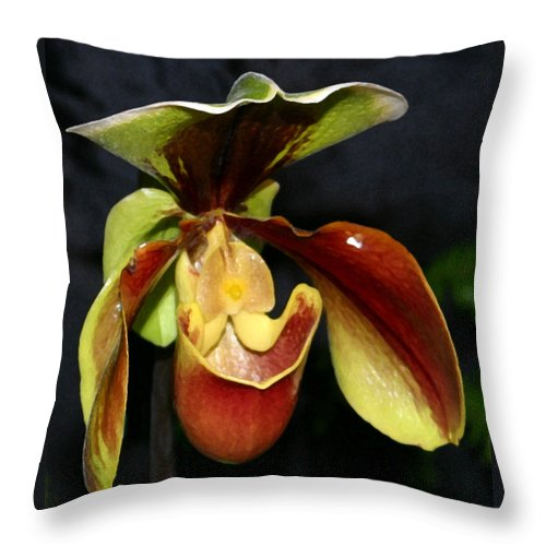 Orchid Throw Pillow featuring the photograph Green And Red Orchid by Mary Haber