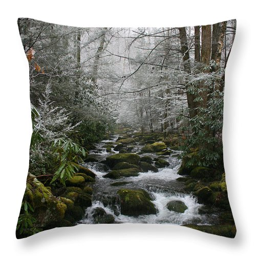 Green Snow Tree Trees Winter Stream River Creek Water Stone Rock Flow Boulder Forest Woods Cold Throw Pillow featuring the photograph Green And White by Andrei Shliakhau