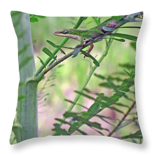 Anole Throw Pillow featuring the photograph Green Anole by Kenneth Albin