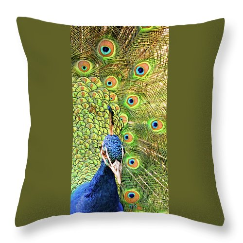 Peacock Throw Pillow featuring the photograph Green Blue Peacock Showing Off His Feathered Tail No2 by Weston Westmoreland