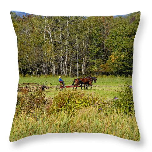 Green Farming Throw Pillow featuring the photograph Green Farming by David Lee Thompson