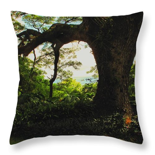Tropical Throw Pillow featuring the photograph Green Giant by Ian MacDonald