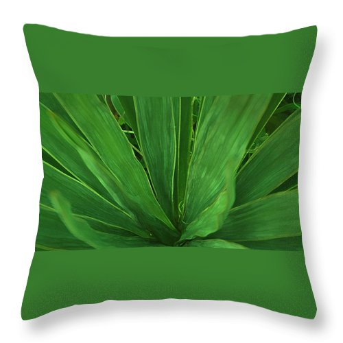 Green Plant Throw Pillow featuring the photograph Green Glow by Linda Sannuti
