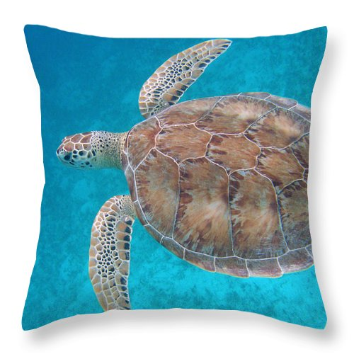 Green Sea Turtle Throw Pillow featuring the photograph Green In Blue by Kimberly Mohlenhoff