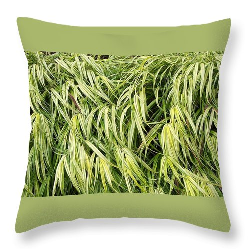 Plants Throw Pillow featuring the photograph Green Plants by Michelle Miron-Rebbe