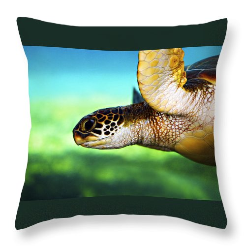 Green Throw Pillow featuring the photograph Green Sea Turtle by Marilyn Hunt