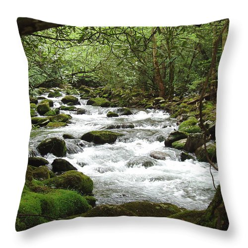 Smoky Mountains Throw Pillow featuring the photograph Greenbrier River Scene 2 by Nancy Mueller