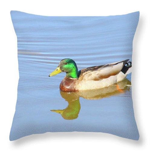 Unlimited Mallard Throw Pillow featuring the photograph Greeny by Tony Umana