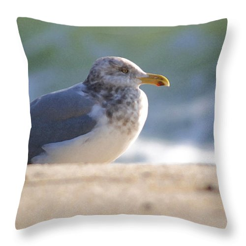 Seagull Throw Pillow featuring the photograph Greeting The Morning by Mary Haber