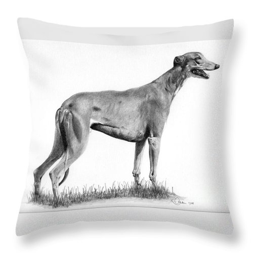 Dog Throw Pillow featuring the drawing Greyhound by Karen Townsend