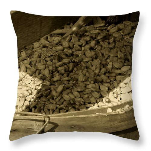 Agriculture Throw Pillow featuring the photograph Grist For The Mill by RC DeWinter