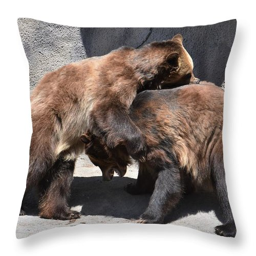 Grizzly Bear Throw Pillow featuring the photograph Grizzlies' Playtime 4 by Flo McKinley