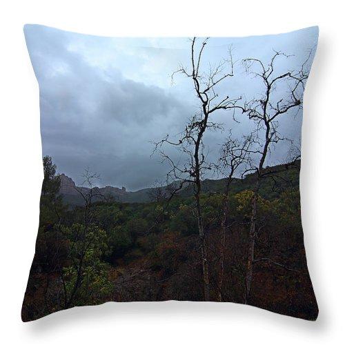 Grotto Trail In Rain Throw Pillow featuring the photograph Grotto Trail In Rain by Viktor Savchenko
