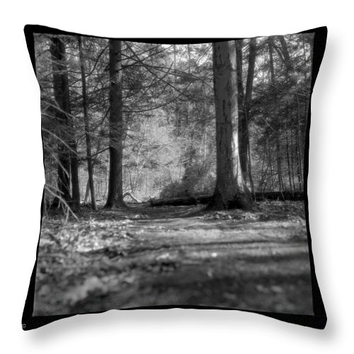 Trees Throw Pillow featuring the photograph Ground Floor by Jean Macaluso