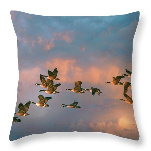 Geese Throw Pillow featuring the photograph Group Flight by John Rivera