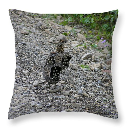 Grouse Throw Pillow featuring the photograph Grouse Pair by Louise Magno