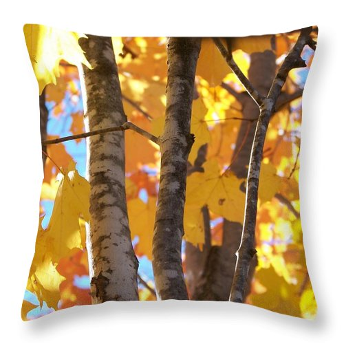 Trees Throw Pillow featuring the photograph Growing Gold - Photograph by Jackie Mueller-Jones