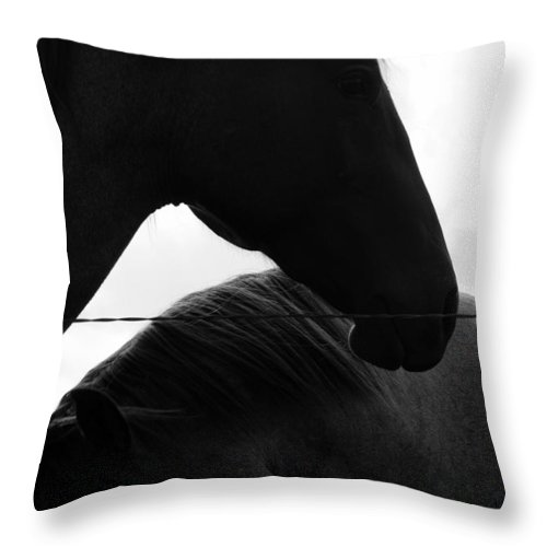 Horse Throw Pillow featuring the photograph Guardian by Elizabeth Hart