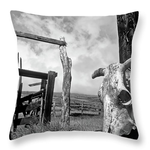 Black And White Throw Pillow featuring the photograph Guardian Spirit by Jim Cazel