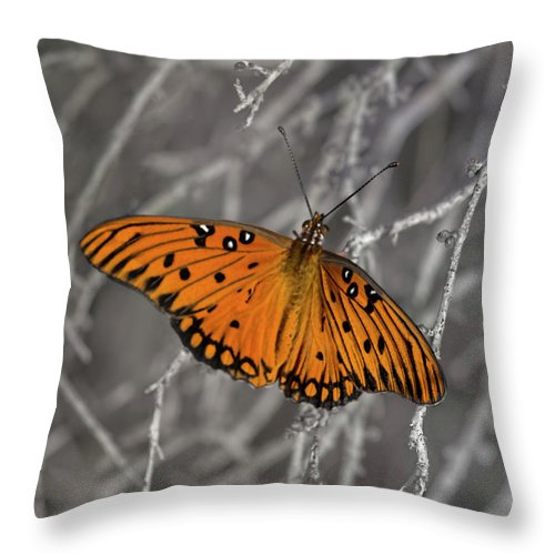 Butterfly Throw Pillow featuring the photograph Gulf Fritillary Butterfly In The Brambles by Mitch Spence