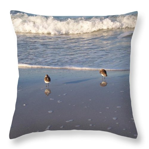 Landscapes Throw Pillow featuring the photograph Gulf Shore 2 by Gigi Croom
