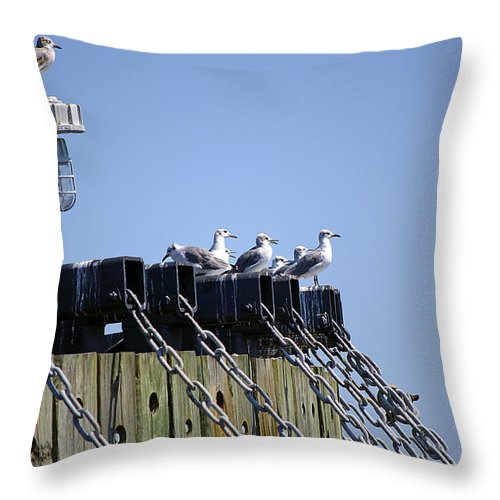 Seagull Throw Pillow featuring the photograph Gulls Watching A Buoy by Kenneth Albin
