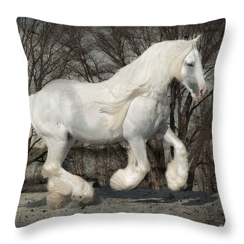 Gypsy Throw Pillow featuring the photograph Gypsy Forest by Fran J Scott